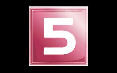 NET5-logo